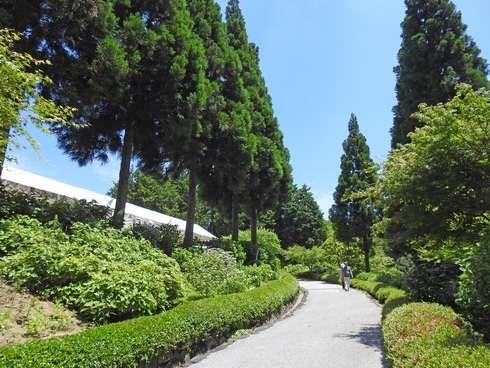 三景園の園路