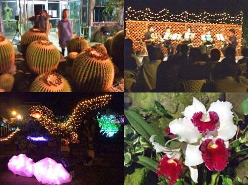 花と光のページェント 植物公園10