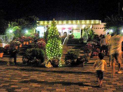 花と光のページェント 植物公園17