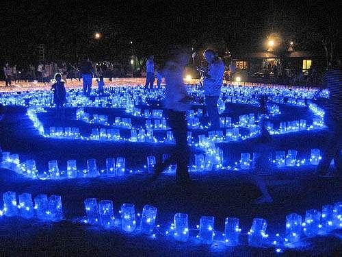 花と光のページェント 植物公園にて開催