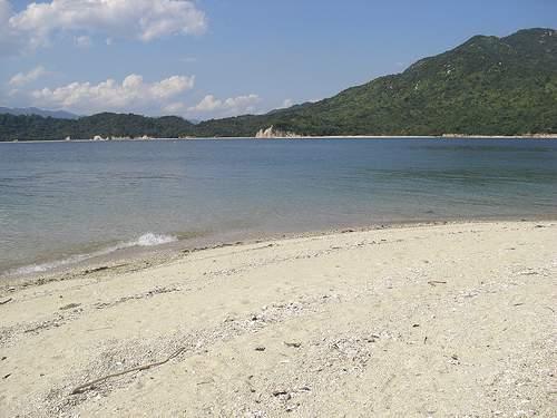可部島 画像 8