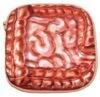 臓器ポーチ 腸