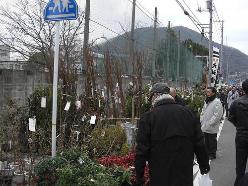 三原神明市 2011 画像 9
