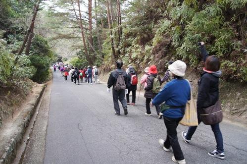 宮島 の春を歩く!ウォーキング大会