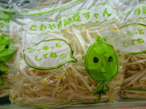 さわやか緑豆ちゃん 画像