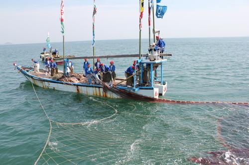 福山市 鞆の浦 鯛網の画像21