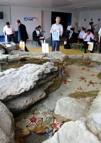 宮島水族館(みやじマリン) リニューアル後の画像12