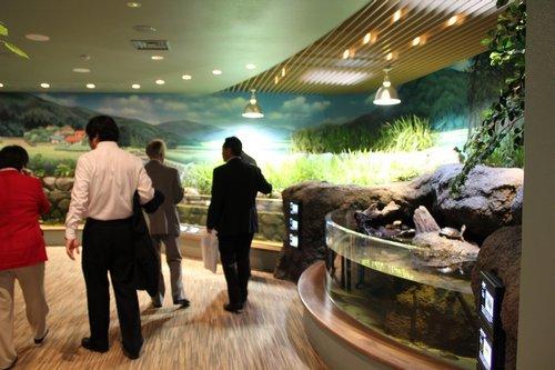 宮島水族館(みやじマリン) リニューアル後の画像13