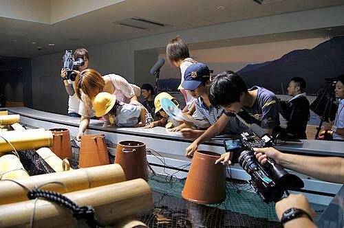 宮島水族館(みやじマリン) リニューアル後の画像6