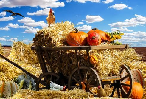 ハロウィンの起源は古代ケルト民族の「サウィン祭」