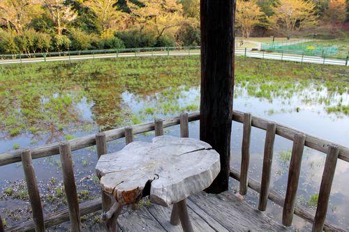 棲真寺公園 広島空港大橋を眺める展望台とお花見広場2