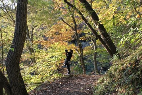 広島県 帝釈峡 紅葉の名所 画像5