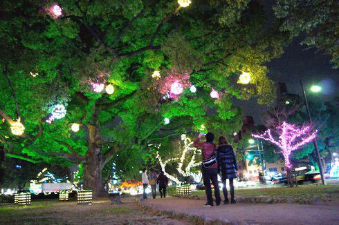 広島 平和大通り ドリミネーション2011画像 13