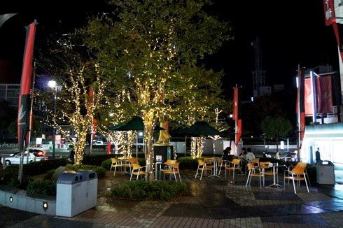 広島 パセーラツリーの写真 7