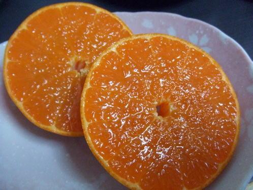 広島産 せとか、出荷スタート。柑橘の女王はギッシリ・ジューシー!