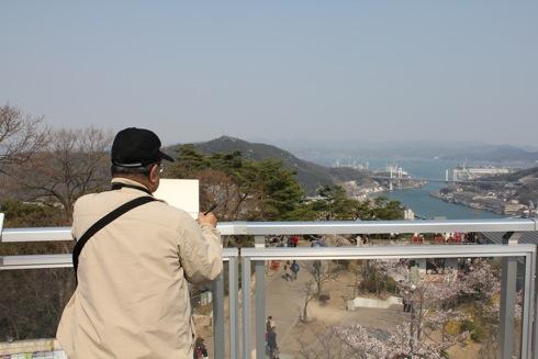 尾道 千光寺公園は 桜名所100選! 画像11