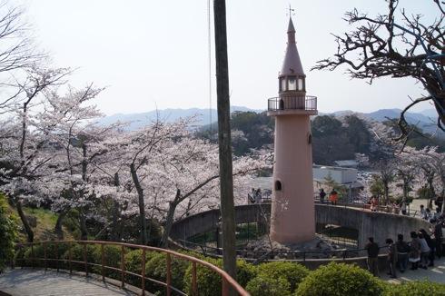 尾道 千光寺公園は 桜名所100選! 画像6