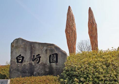 白崎園、とびしま海道の入口にある休憩スポット!春にはツツジ園も