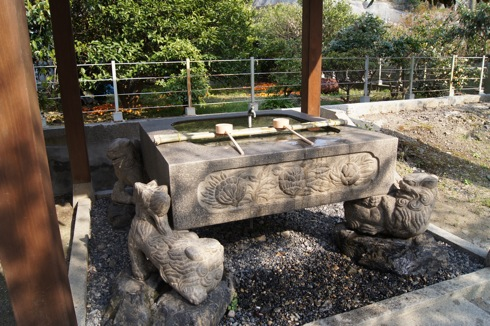 大崎下島 御手洗(広島)の天満神社の桜 画像3