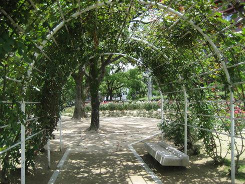 福山 ばら公園の画像23