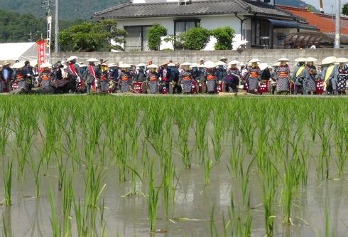 壬生の花田植え 囃子の画像11