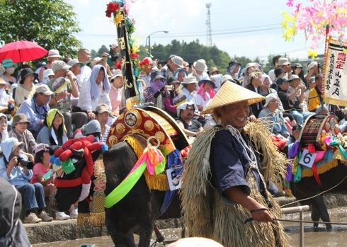 壬生の花田植え 飾り牛の画像37