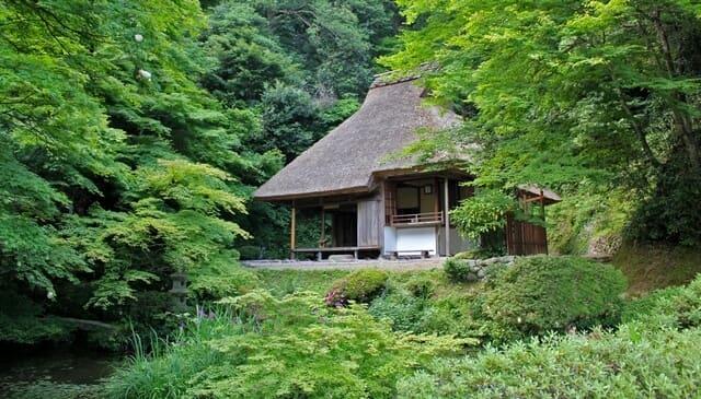 吉水園、広島・安芸太田町で天然記念物 モリアオガエルも