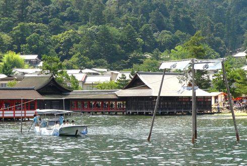 宮島 厳島神社の 玉取祭の様子 画像11