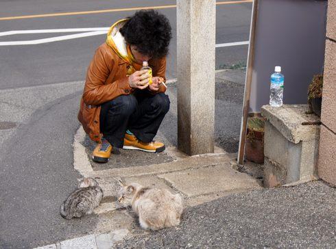 猫石コレクション、福山・鞆の浦 路地裏で会ったネコたち