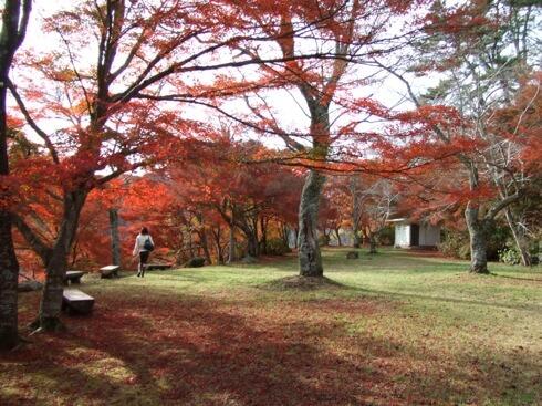三次市 尾関山公園 写真13