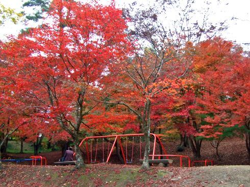 三次市 尾関山公園 ブランコと紅葉