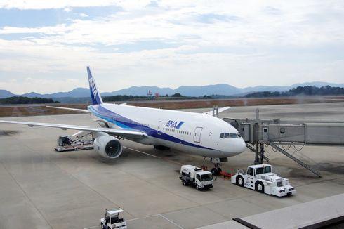 広島空港まつり 飛行機の画像