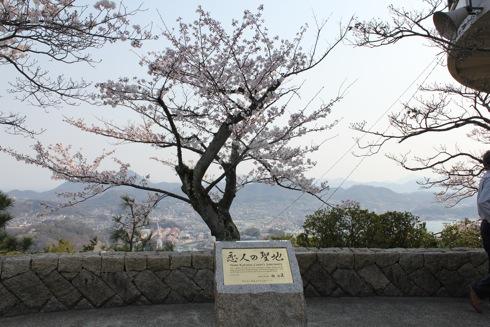 尾道 恋人の聖地 画像