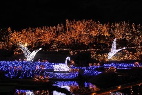 備北丘陵公園 イルミネーション2012 光ル森の画像