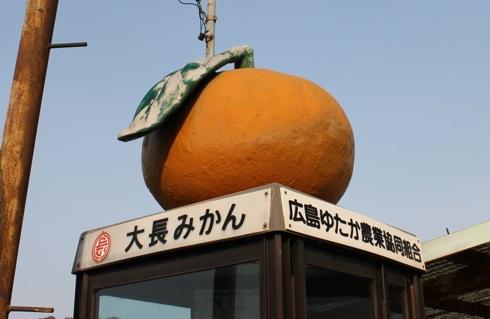 みかん電話ボックス!? 大長みかんの島ならでは 大崎下島の風景