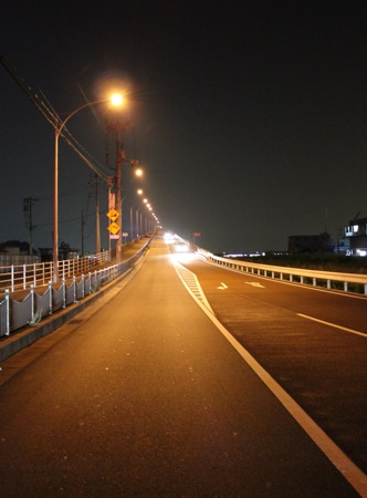 広島はつかいち大橋 夜の写真1
