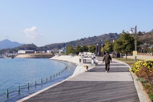 沖浦港おさかな公園 犬と散歩