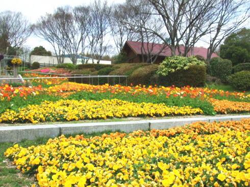 広島市植物公園 園内画像