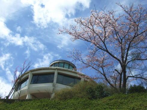 広島市植物公園 展望台
