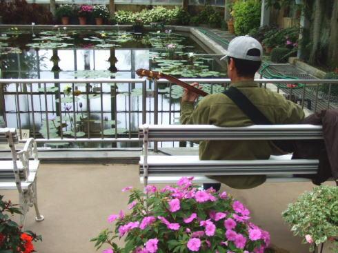 広島市植物公園 大温室の中の様子3