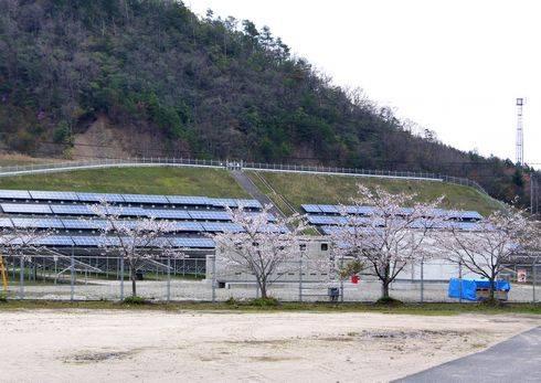 広島県安芸太田町 メガソーラー発電所と桜