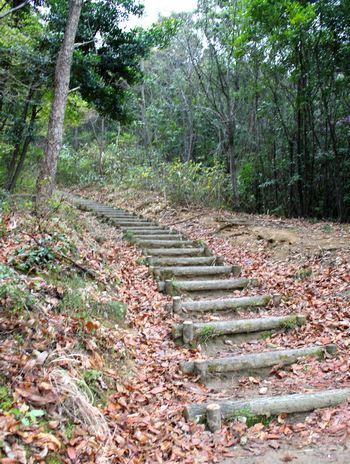 鏡山城跡への階段 1