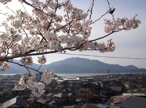 廿日市市 大田神社からの眺め(海)