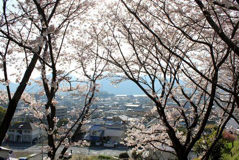 廿日市市 大田神社からの眺め(町並み)
