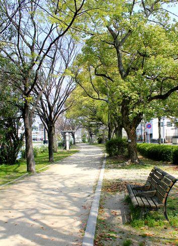広島市 水の都リバーウォーク ベンチと緑
