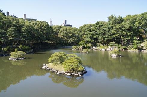 縮景園の池にいる亀