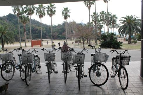 大久野島(うさぎ島)の観光は、レンタサイクルが楽しい!ラクラク1周