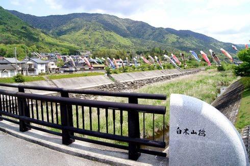 三篠川に 鯉のぼりが泳ぐ風景