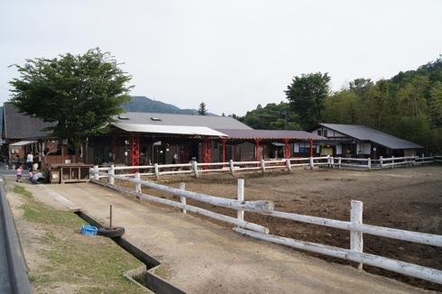 カドーレ の牧場の様子