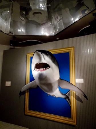 広島 ガラスの里 トリックアート